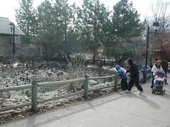 Zoo of Denver  DSCN0129_1