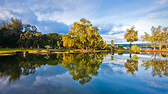 Hilo Reflections (konaboy) Tags: park morning trees water reflections hawaii pond bigisland hilo 7090 liliuokalanigardens