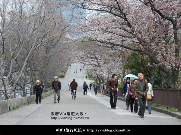 【via關西冬遊記】大阪城天守閣!冬季限定:梅園梅花盛開33