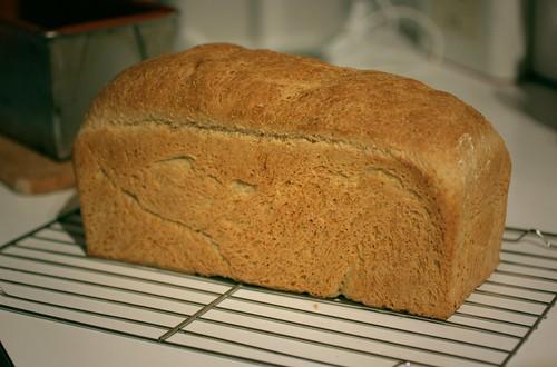52 - Fresh Bread