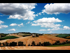 Landscape Blue Orange (Gianluca, very busy!) Tags: blue summer italy orange cloud white holiday home nature colors yellow rural landscape bravo europe hill land marche jesi collina ancona theciccio