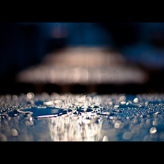 Liquid Bokeh (Eric M Martin) Tags: water rain 50mm nikon dof bokeh 365 lowes wideopen d90 project365 niftyfifty 50mmf14g nikond90 365201002