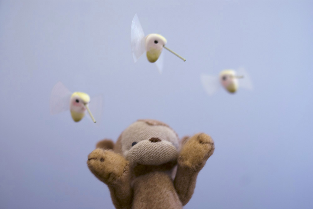 U7_birds3