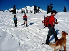 Trail Pair, Opus & Gus