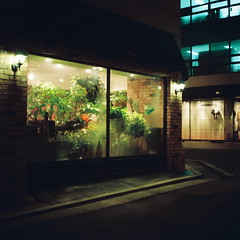 2051/1838' (june1777) Tags: street light night zeiss square kodak snap jena 66 v3 carl seoul russian kiev portra 800 f28 60 gangnam 80mm kiev60 czj biometar shinsadong