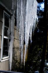 DSCN0161 (John Moffett) Tags: icesickles