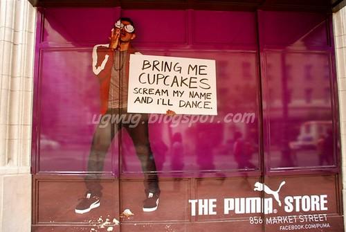 I Want Cupcakes!