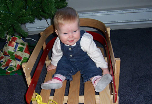 Playing in the new sleigh