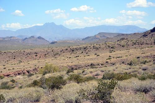 Arizona 2011 605