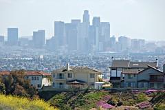 Background Downtown (Pedestrian Photographer) Tags: california houses house la losangeles los downtown angeles background hill april foreground 2011
