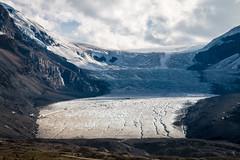 Glacier Athabasca de Columbia Icefield (Seb & Jen) Tags: rocheuses rockies alberta canada columbia icefield glacier athabasca