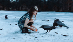 playful omens (lauren zaknoun) Tags: surreal surrealphotography surrealism conceptual conceptualphotography crows ravens snow winter newengland winterwitch witch snowwitch girl fantasy feathers darkphotography dark fairytale animals birds