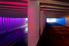 _DSC2680 (durr-architect) Tags: tunnel vision herman kuijer light installation dutch underpass zutphen netherlands architecture art designer artist colourful luminescent motorists cyclists pedestrians time space kcap baljon baauw royal haskoning dhv bam prorail train railway