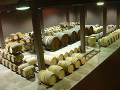 Sala de Barriques dEspelt Viticultors