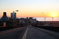 Pier de Santa Monica - Sunset (Nanda Ferreira / B E N D I T A fotografia!) Tags: california ca sunset pordosol usa bird sol pier losangeles twilight santamonica eua ave crepusculo tarde passaro rodagigante entardecer fimdetarde nandaferreira