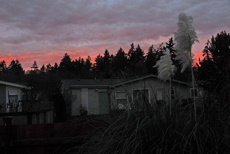 Sunrise 25 Nov 04