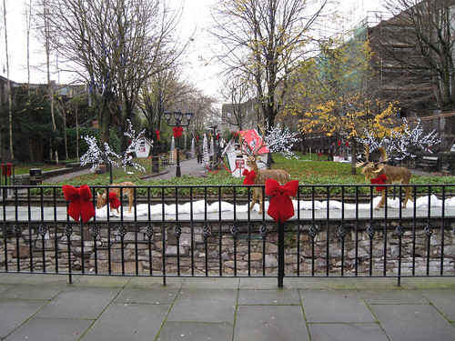 Bishop Lucey park in the christmas spirit