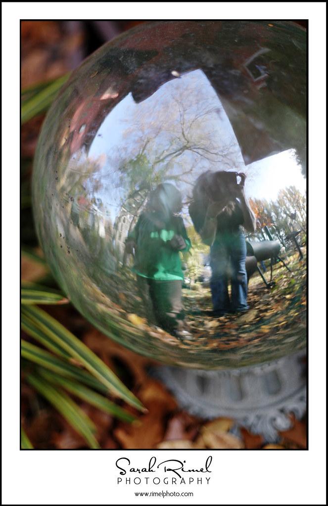 leaf fun 08