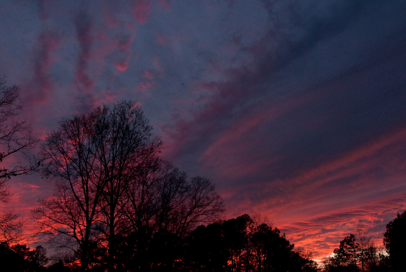 Day 79: Red Sky