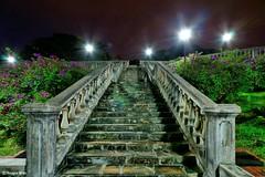 Spooky encounter #2. (Reggie Wan) Tags: park night garden singapore asia southeastasia soe twop terracegarden stonestaircase sonya700 telokblangahhill reggiewan