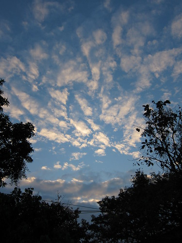 Chiang Mai Dawn