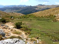 Pozzine du ruisseau de Pascialella au N de Punta di A Bambiola