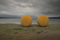 Ironman Race marker buoys - Lake Taupo - NZ (Nick Caro - Photography) Tags: newzealand sky lake yellow race stormy ironman inflatable shore caro nz marker taupo buoys triathlon buoy buoyant nickcaro nickcarophotography wwwnickcarophotographycouk