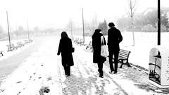 Fade (Luptor) Tags: winter bw snow ice fog walk bn neve fujifilm nebbia inverno gennaio romagna mattino cervia pinarella finepixs2000hd