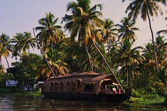 cruise on the backwaters (marinfinito) Tags: cruise india asia ship kerala backwaters southindia beautifullandscape theunforgettablepictures