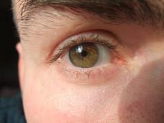 brown macro eye contactlens iridology leehaywood