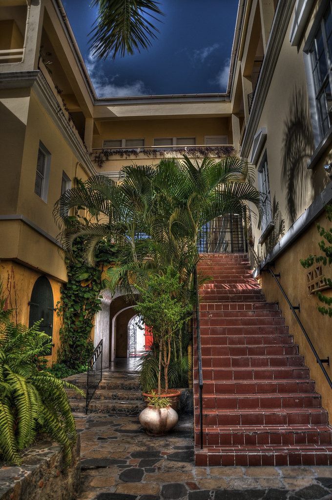 Palmtree and Staircase