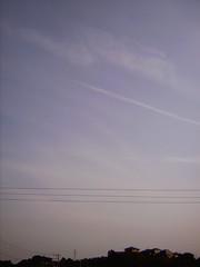 【写真】Separator (DCC Leica M3)