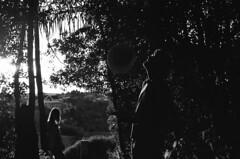 isso é agora (Marcelo Deguchi) Tags: light shadow tree film hat silhouette forest dawn woods nikon retrato sombra pb eerie bosque shade flare f3 filme dim floresta wagner joana entardecer chapéu sihlueta