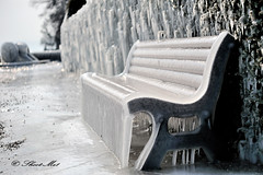 Take a seat, you look Hot... (Explore!) (Shoot-Me1) Tags: ice bench march nikon geneva 11 explore d3 shootme bej frozenseat shootme1