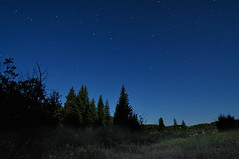 Dipping into the Elkhead Mountains (Fort Photo) Tags: mountains nature night forest stars landscape star nikon colorado nightscape searchthebest astrophotography co astronomy bigdipper 2010 d300 starscape elkheadmountains nwco