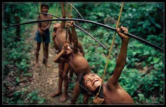yanomami, enfants,forêt, amazonie,fleches