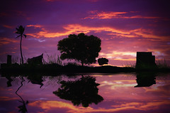 What PS is.... (2k Photography) Tags: sunset lake reflection tree water grass clouds composition photoshop boat purple flood palm hut elements 2k vrn ~2|{~ pushpdeeppandey varunagarwal