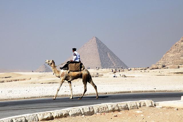 エジプト、ピラミッド、ラクダに乗った警官