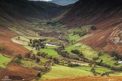 Patchwork Boredale.. (CamraMan.) Tags: patchwork boredale valley cumbria beck nature ©camraman
