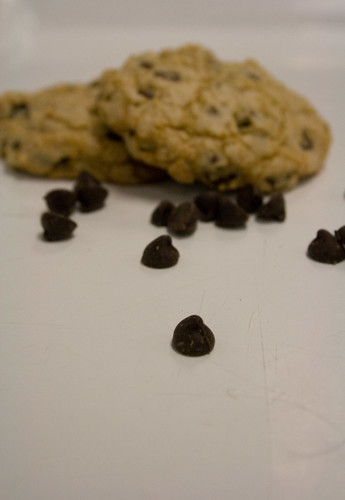 chocolate chip cookies two