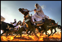 The Brave Knights ! (Bashar Shglila) Tags: world festival race speed photography interesting gallery with photos action shots top sony traditional taken best most knights worlds popular libya outfits libyan cavaliere  hourses libyen   lbia   libi  libiya  zentan platinumphoto   liviya  libija  alzintan alzentan zintan dschx1     lbija  lby libja lbya liiba livi   azzentan  azzintan