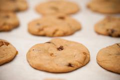caramel chocolate chip walnut cookies 焦糖朱古力核桃曲奇 (yujai) Tags: dessert baking sweet walnuts caramel american snack chip chococlate cokies