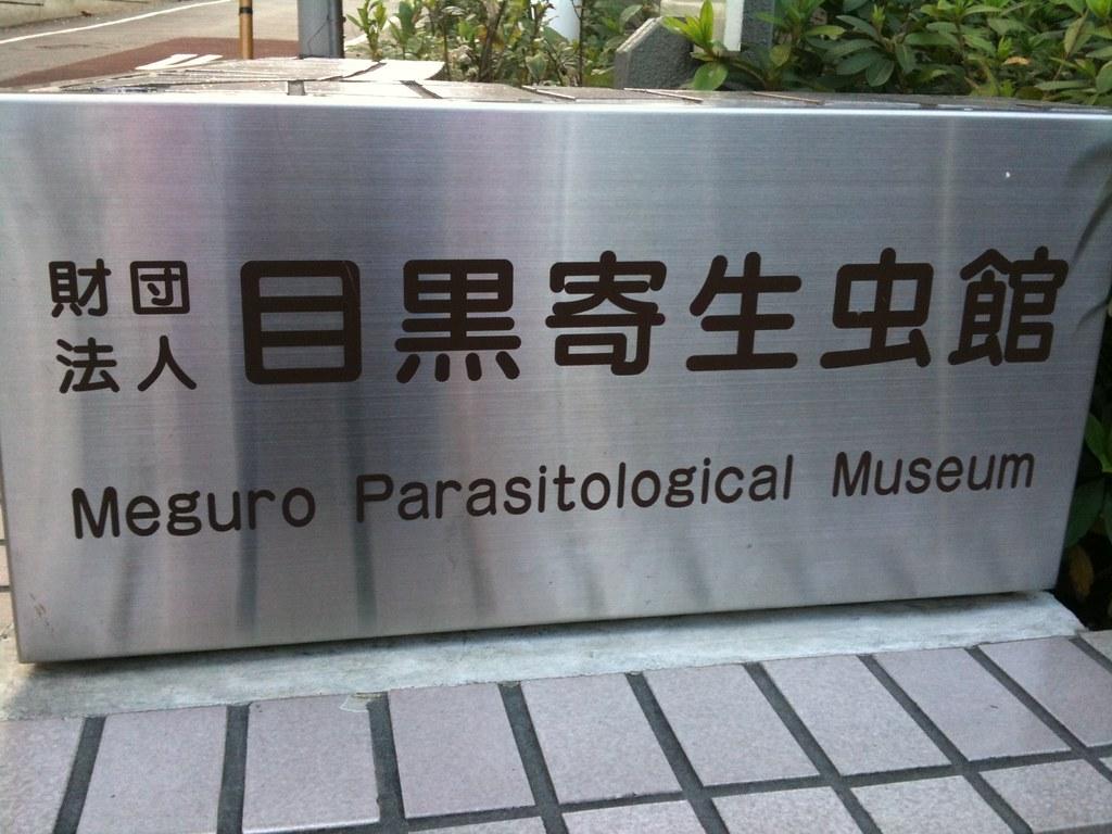 parasite museum_5146