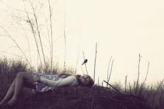 (Anna Hollow) Tags: anna bird me girl branches annahatzakis editingwasinspiredbycariannwaymanbytheway annahollow