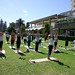 Port Macquarie yoga Aid Challenge 2009