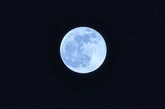 Blue Moon 12-31-09 (3)