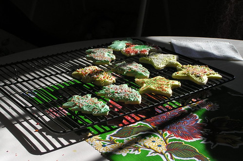 cookies in the sun