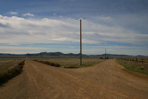 two roads diverged yadda yadda country sticks