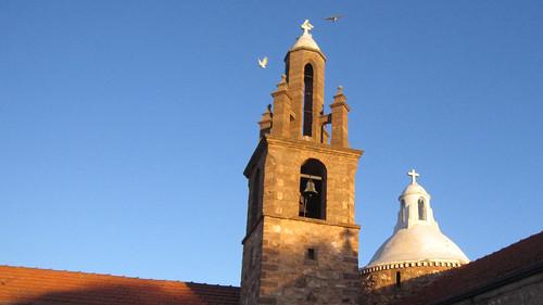 Birds on the Belfry