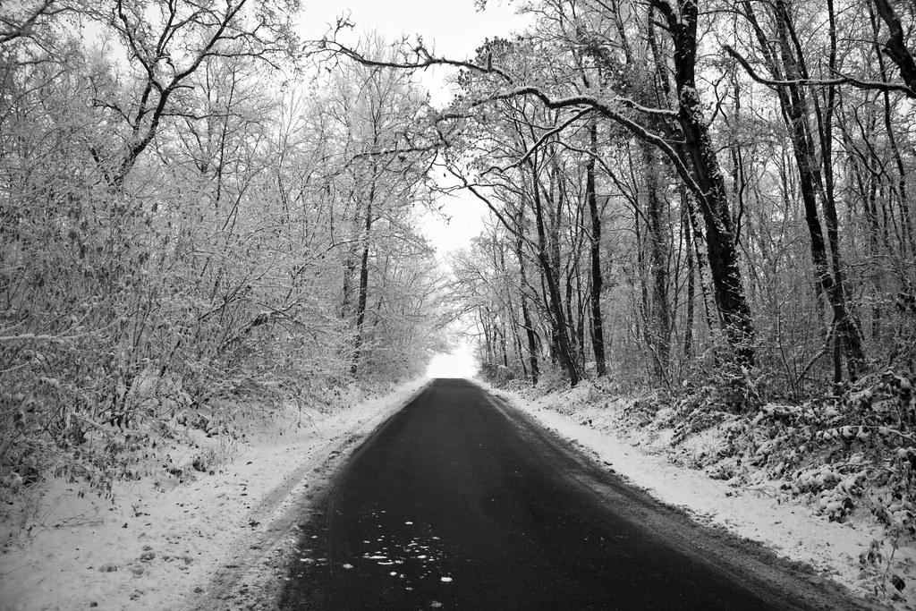 Dulzago Road #1 (by storvandre)